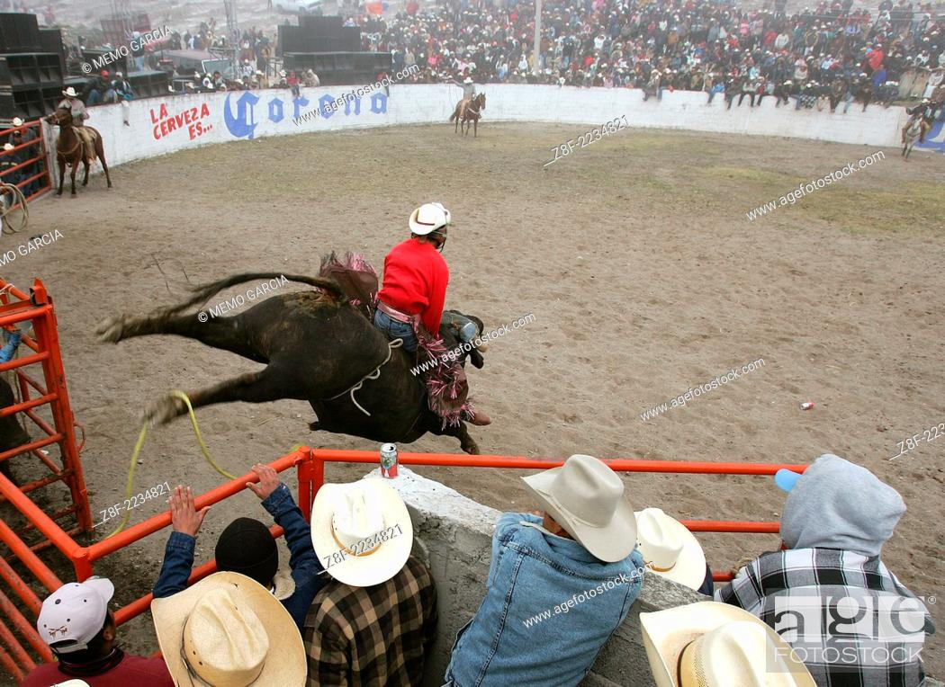 Jaripeo Events