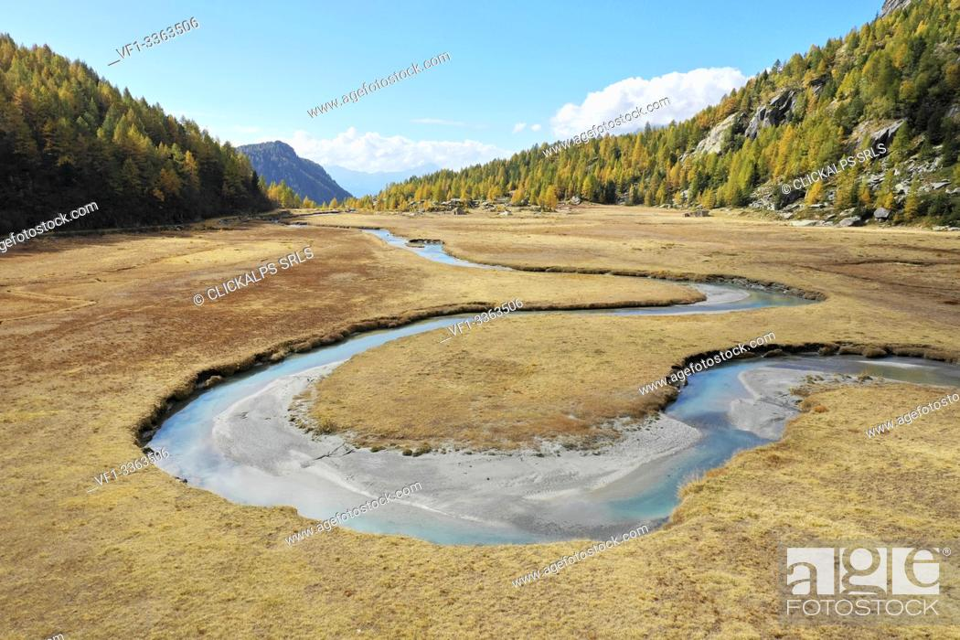 Stock Photo: Aerial view of the winding Duino river and the larches in autumn in Preda Rossa valley. Val Masino, Sondrio province, Lombardy, Italy.