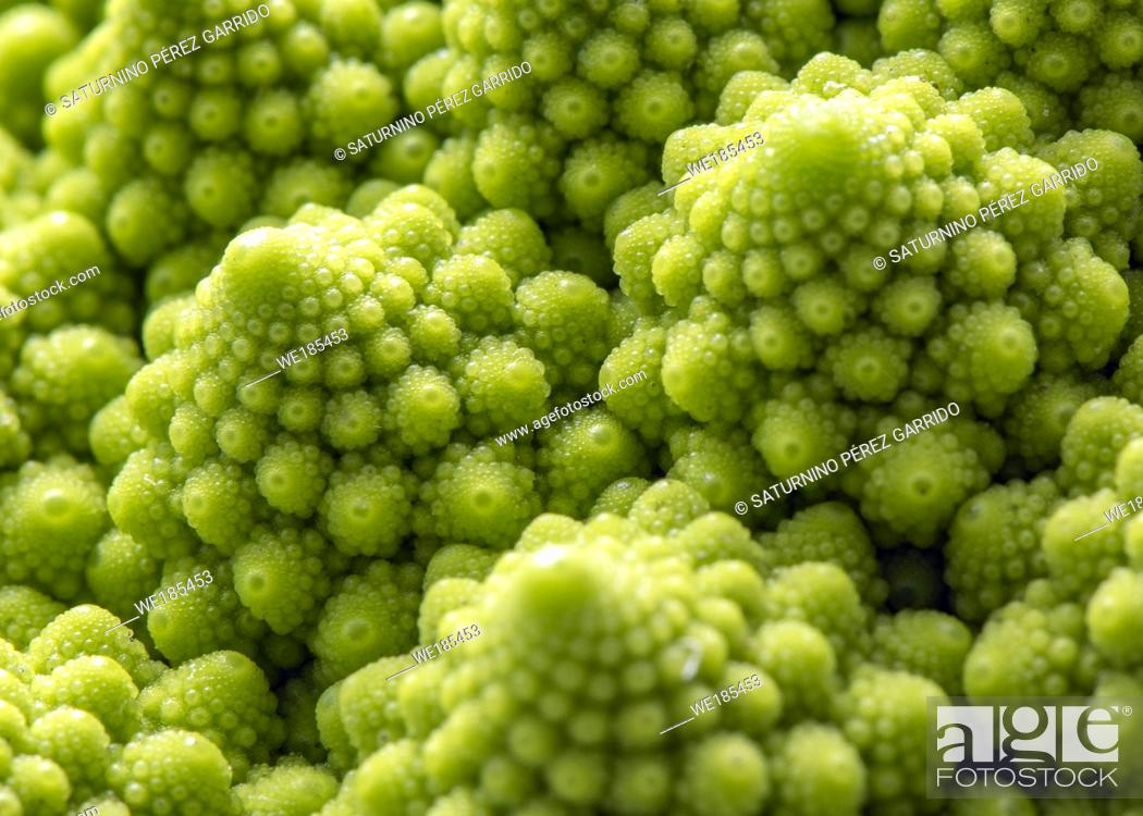 Stock Photo: Romanesco, vegetable with a repeated construction called fractal geometry.