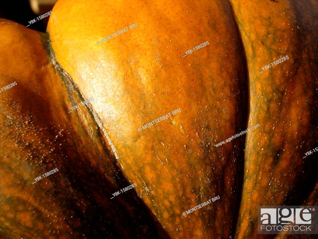Stock Photo: Pumpkin closeup.