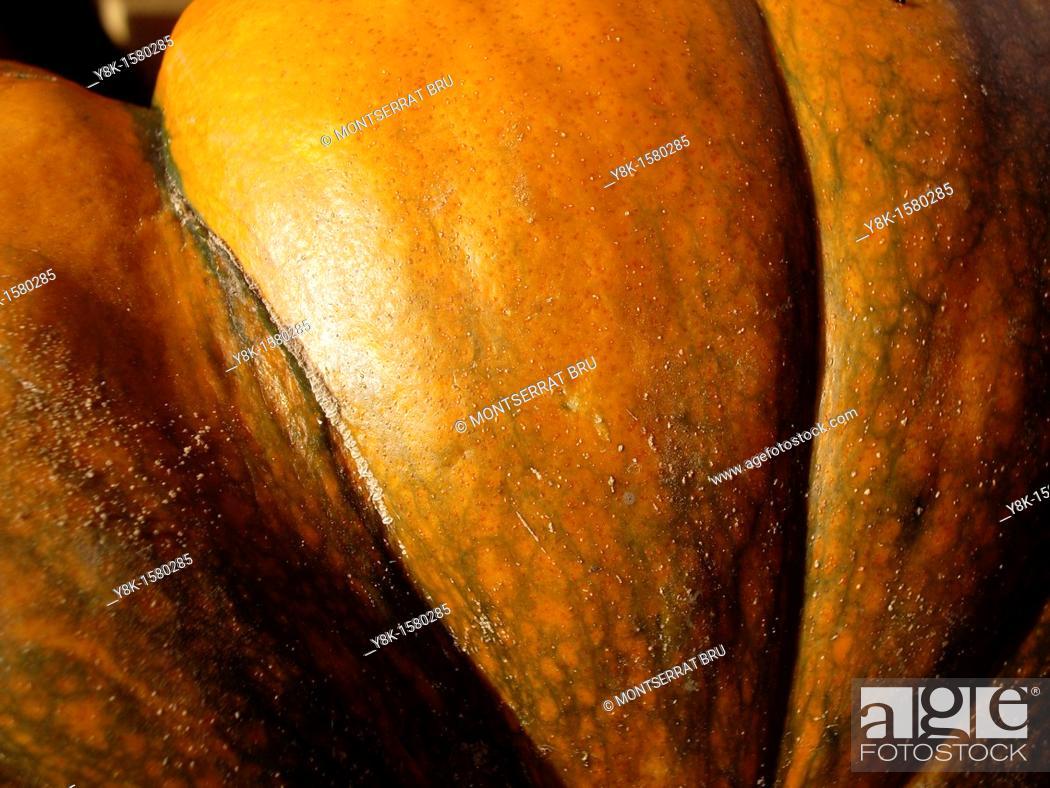 Stock Photo: Pumpkin closeup.