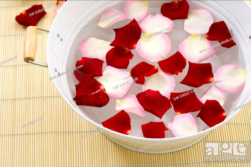 Stock Photo: Rose petals in dish with water.