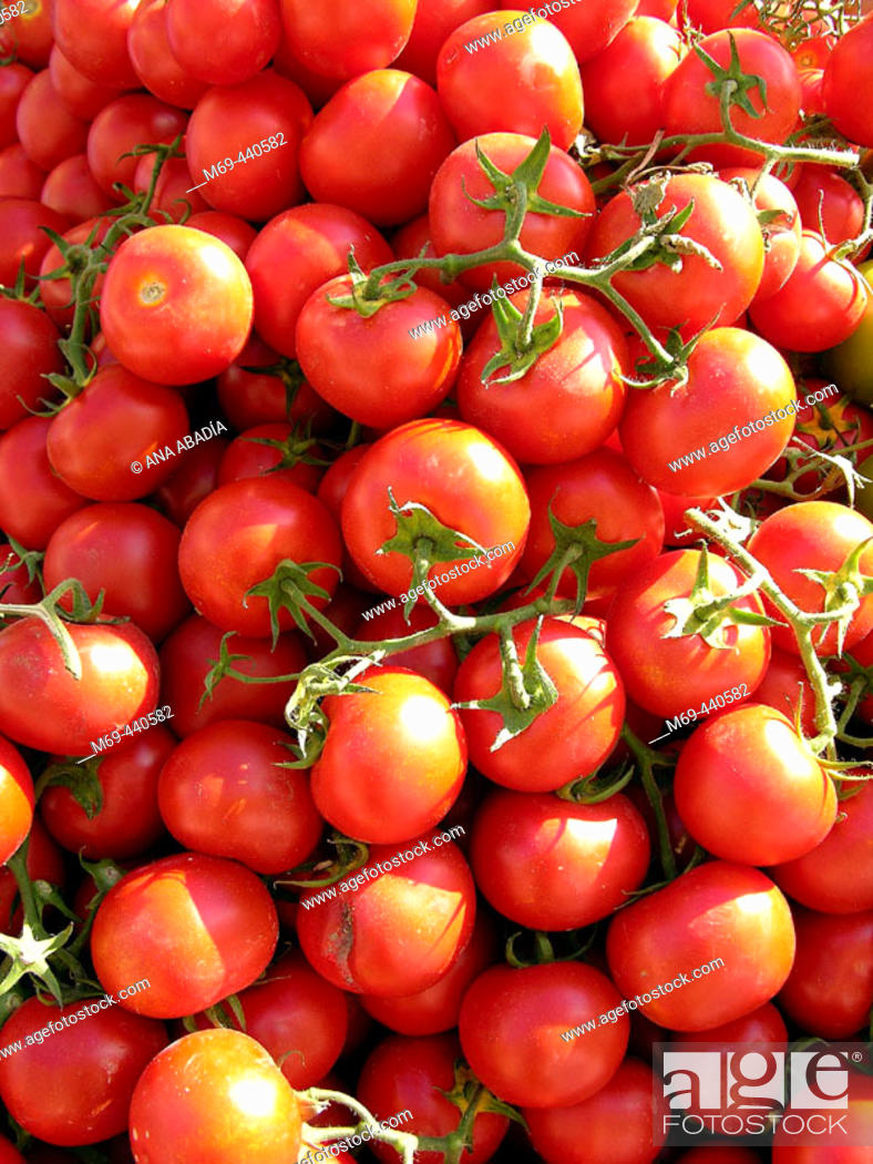 Stock Photo: Tomatoes for sale in market. Camprodon. Girona province, Catalonia. Spain.