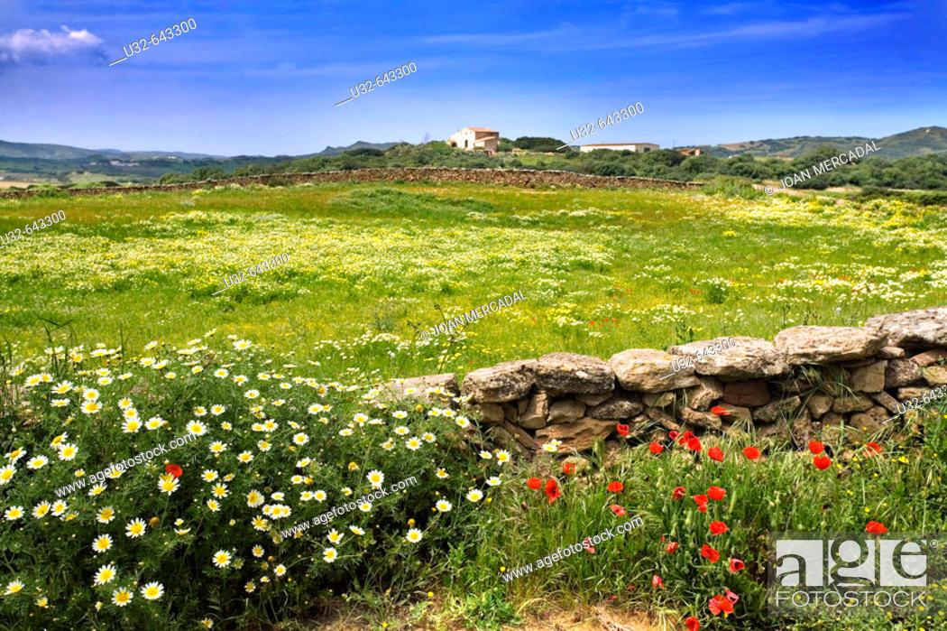 Stock Photo: Spring. Minorca. Balearic Islands. Spain.