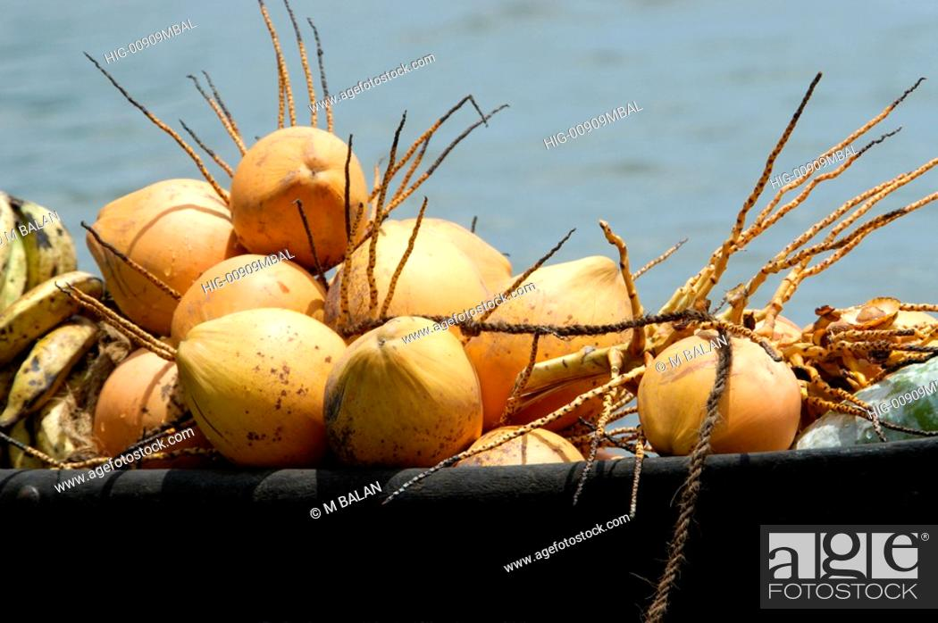 Stock Photo: COCONUTS AND VEGETABLES IN BOAT.