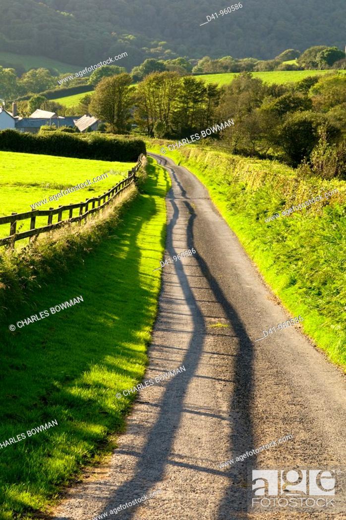 Stock Photo: uk, england, Devon, north exmoor track.