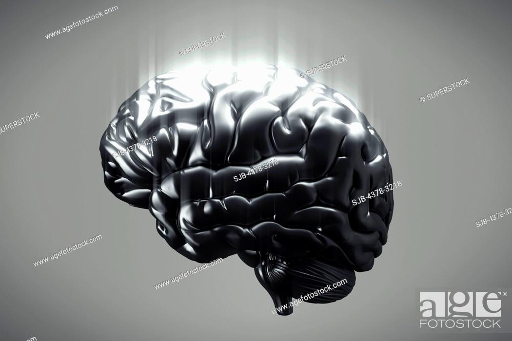 Stock Photo: A side view of a metallic brain. The cerebral hemispheres, cerebellum and brain stem are visible.