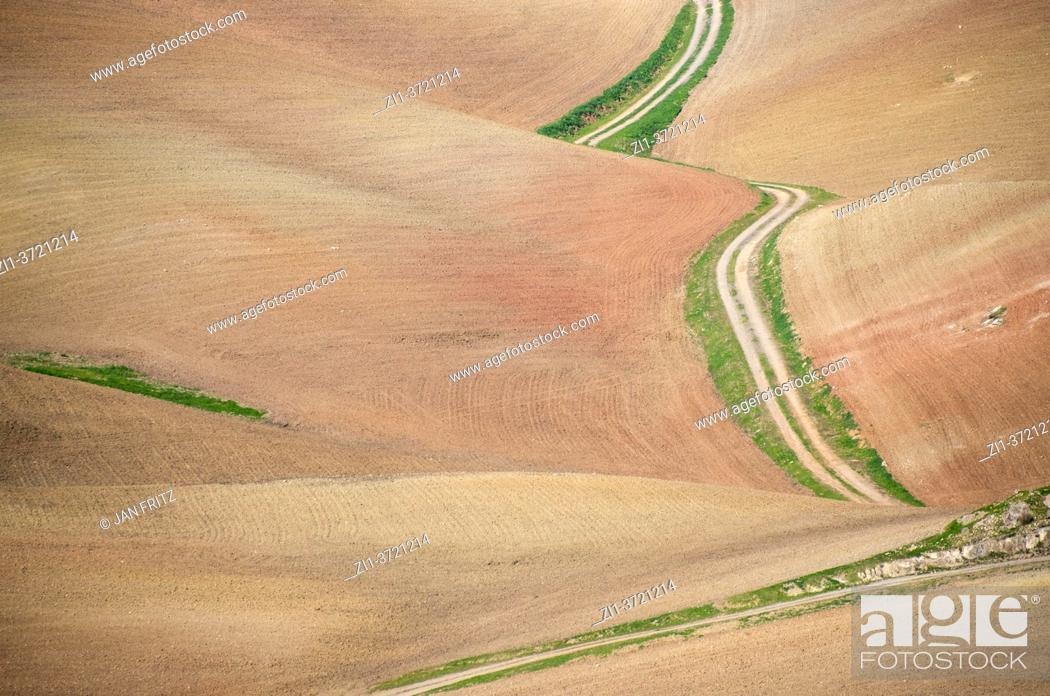 Imagen: view at an empty road and dry landscape with empty fields in Andalucia in Spain.
