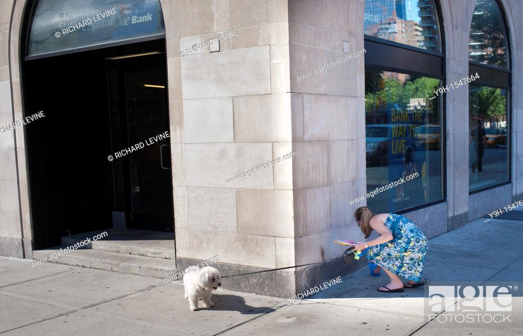 Stock Photo: A woman in the Chelsea neighborhood of New York picks up after her dog.