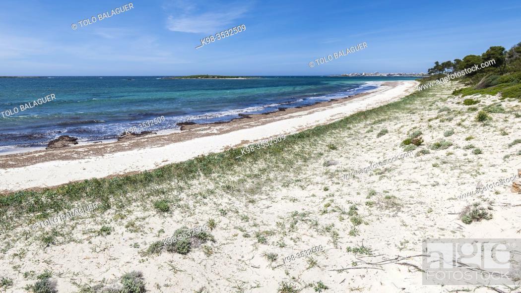 Stock Photo: Es Carbo beach, Ses Salines, Mallorca, Balearic Islands, Spain.