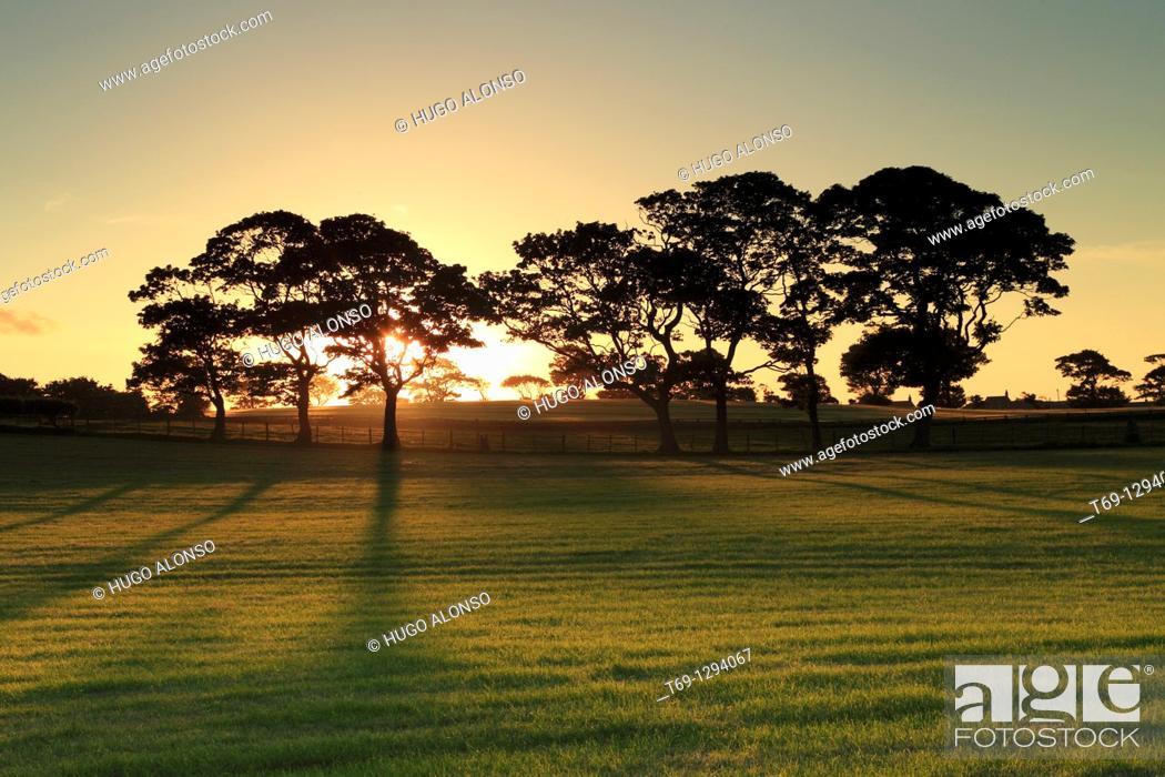 Stock Photo: Sunset, Seahouses, England.