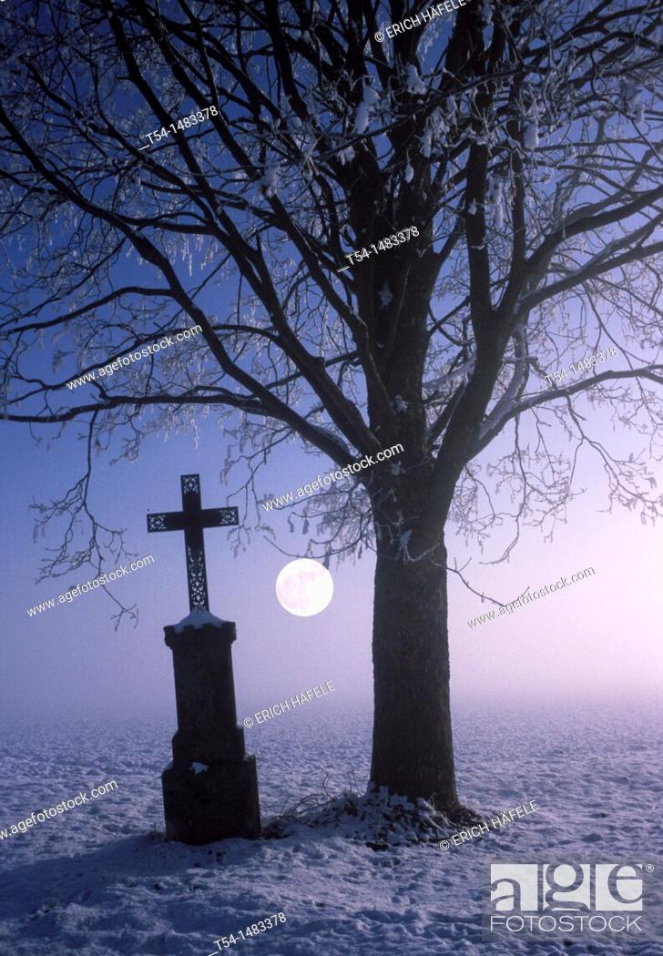 Stock Photo: Cross beside a bare tree on a cold full moon night.