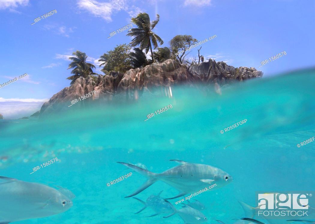 St Pierre Near Praslin The Inner Islands The Seychelles