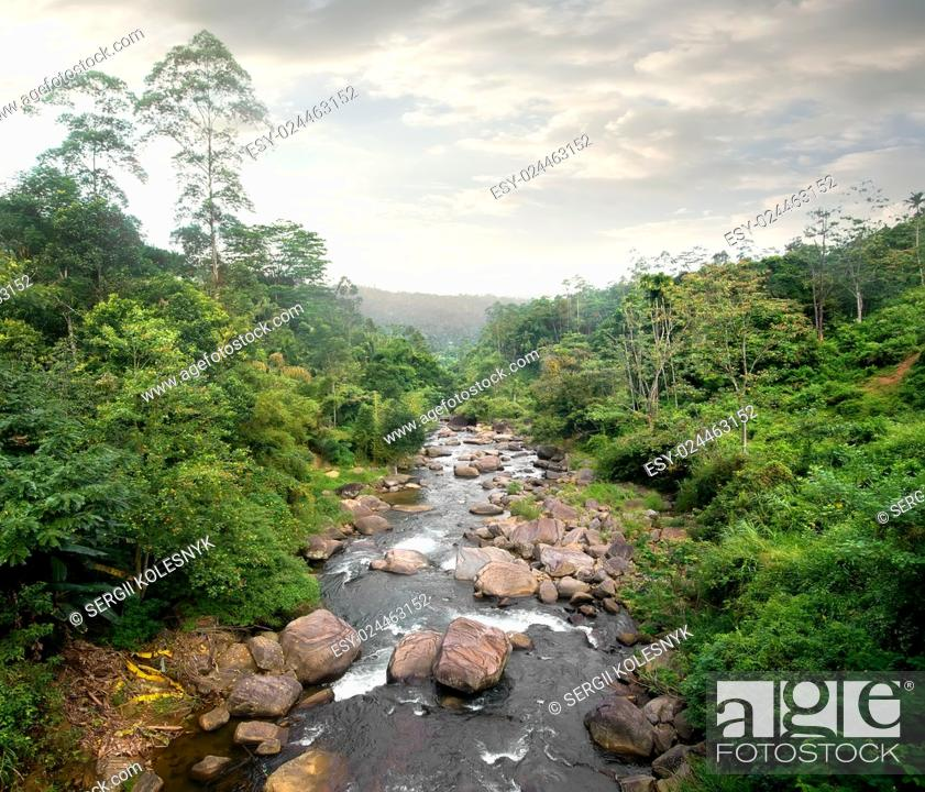Stock Photo: Cloudy weather and river in tropical forest.