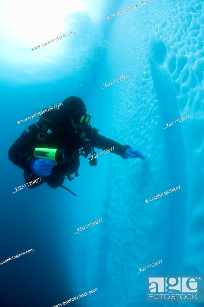 Stock Photo: Antarctic peninsula diver and iceberg underwater.