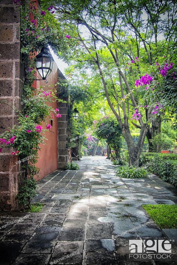 Stock Photo: Landscape in Galindo, Querétaro, MEXICO.
