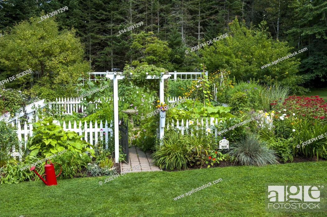 Photo de stock: A fenced vegetable garden with borders of perennial plants in beds in the foreground.