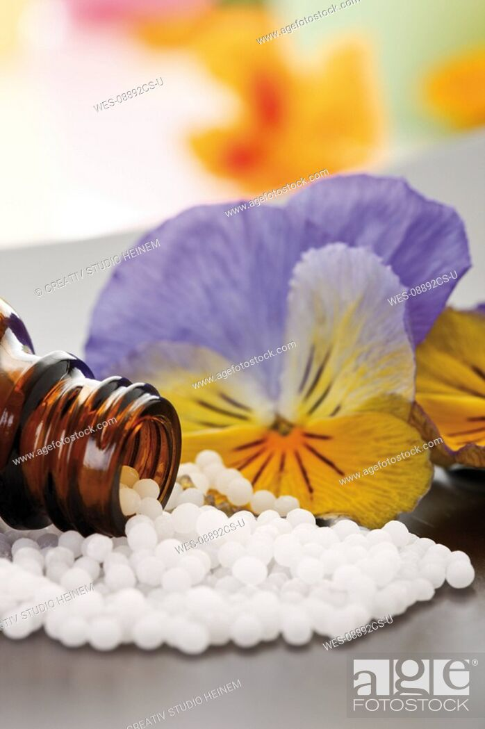 Stock Photo: Medicinal flask with pills in front of Horned violet Viola cornuta, close-up.