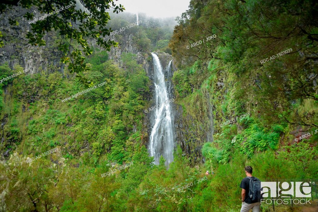 Stock Photo: Risco Wasserfall, Rabacal-Tal, Zentralgebirge, Madeira, Portugal.