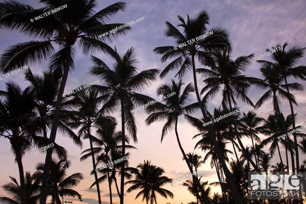 Stock Photo: Dominican Republic, Samana Peninsula, Las Terrenas, Playa Las Terrenas beach, dawn.