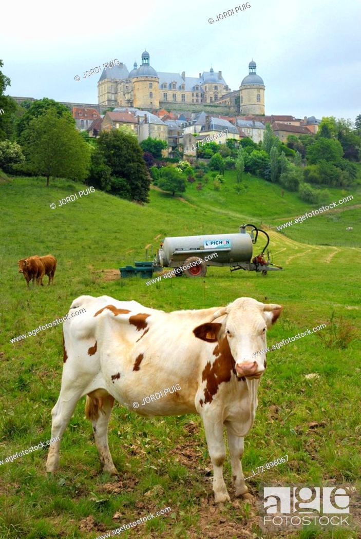 Stock Photo: Hautefort. Dordogne, Aquitaine, France.