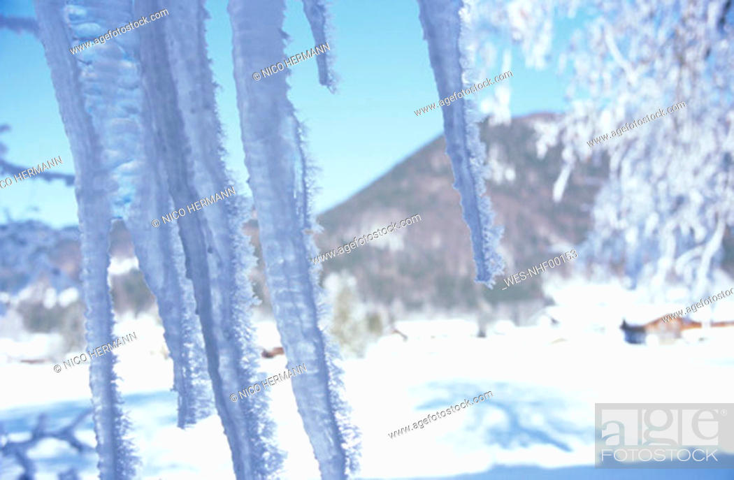 Stock Photo: Icicles in mountains, close-up.