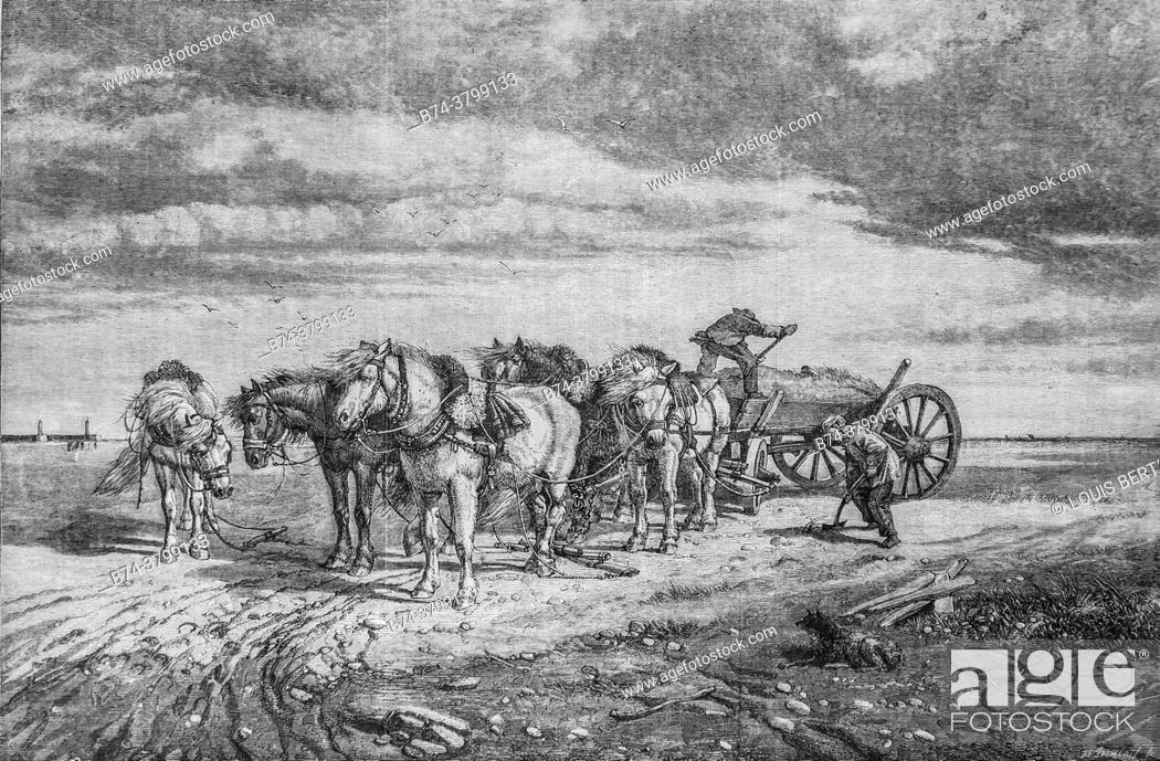 Photo de stock: the sand collectors on the strikes of the pas de calais, ; the illustrious universe, publisher michel levy 1868.