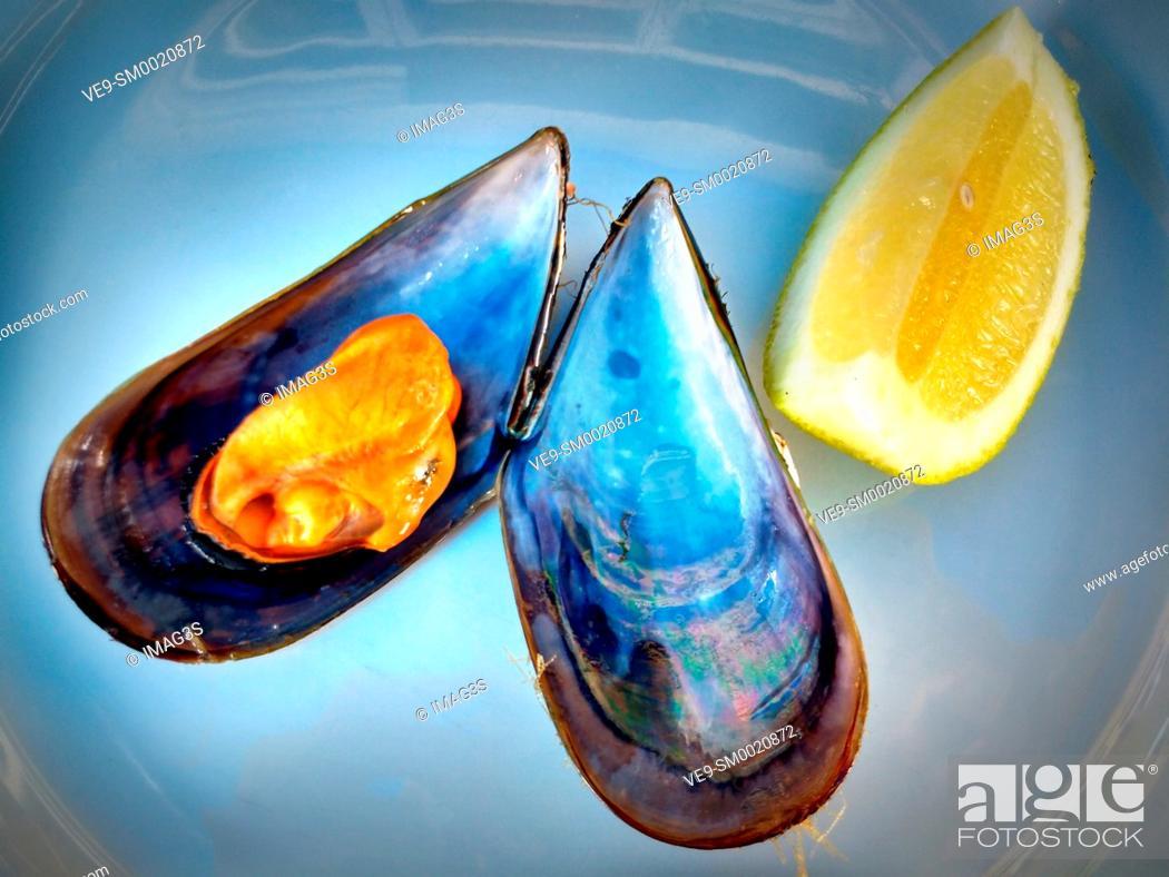 Stock Photo: Steamed mussel, Lorbé, A Coruña, Spain.