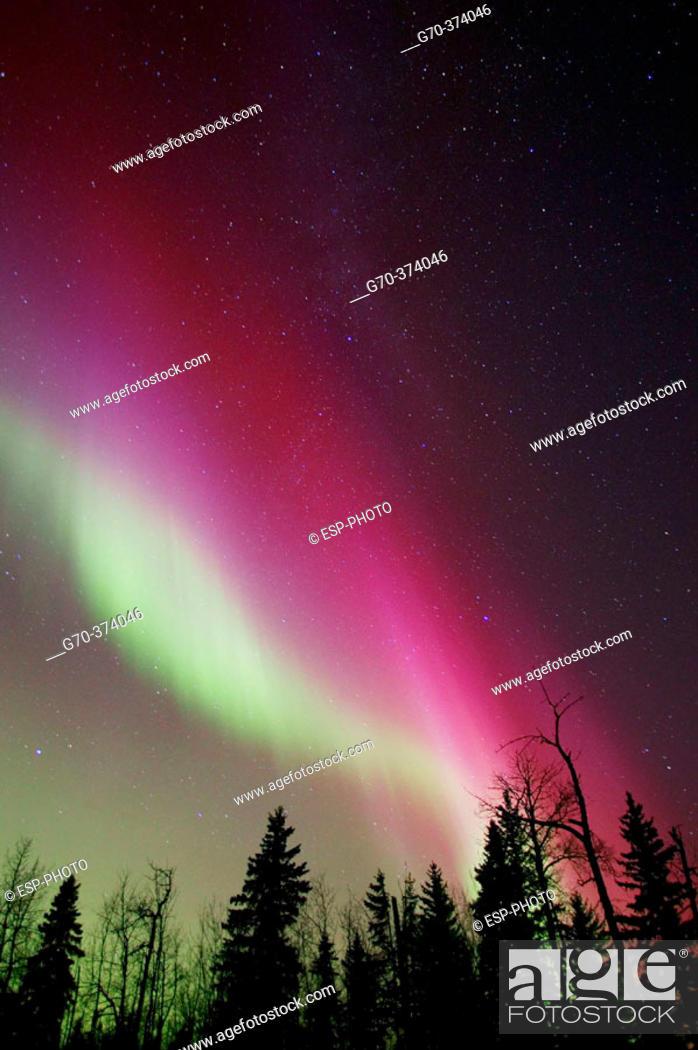 Stock Photo: Northern Lights over Elk Island National Park, Alberta Canada.