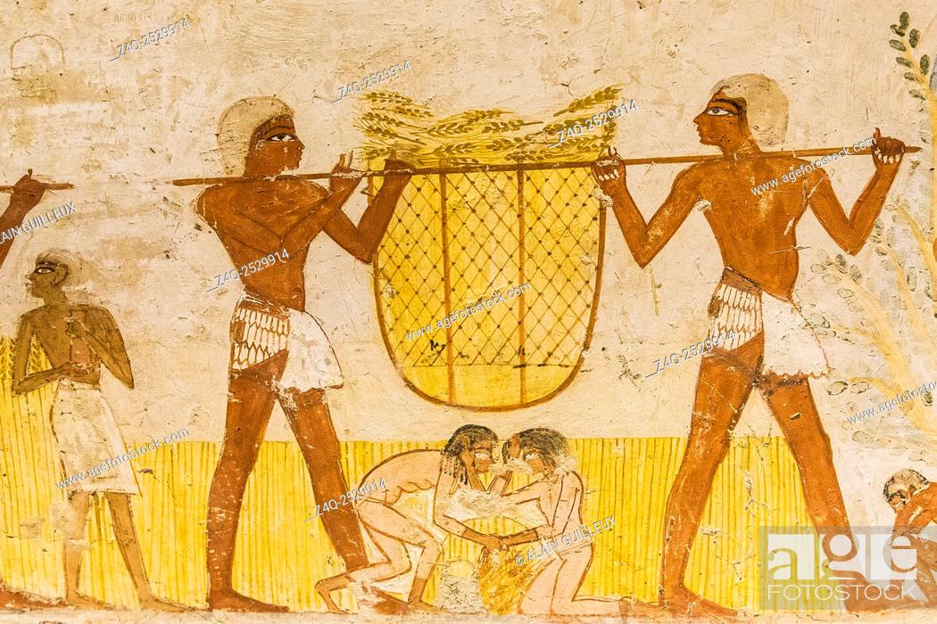 Stock Photo: UNESCO World Heritage, Thebes in Egypt, Valley of the Nobles, tomb of Menna. This classical agricultural scene is made more lively by several funny details.