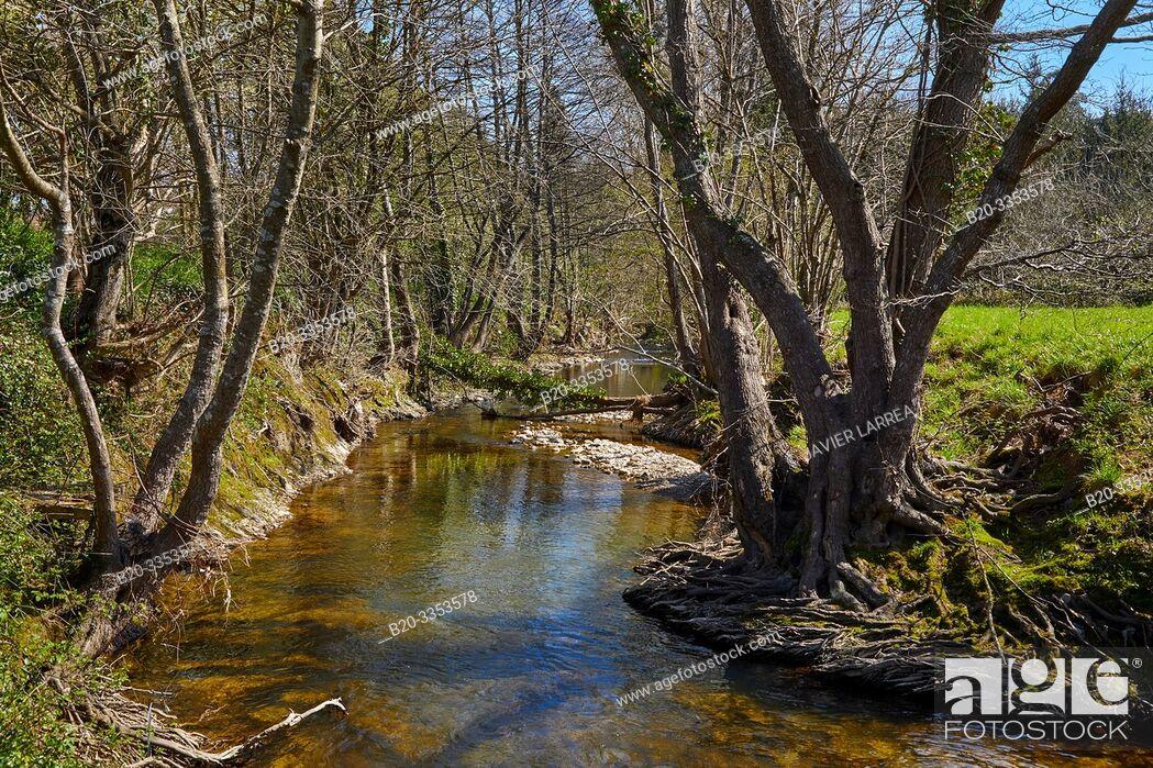 Imagen: Oria River, Segura, Gipuzkoa, Basque Country, Spain.