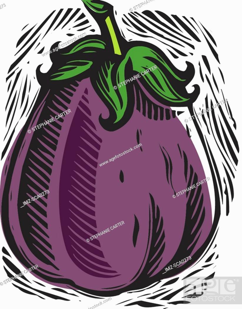 Stock Photo: fresh eggplant.
