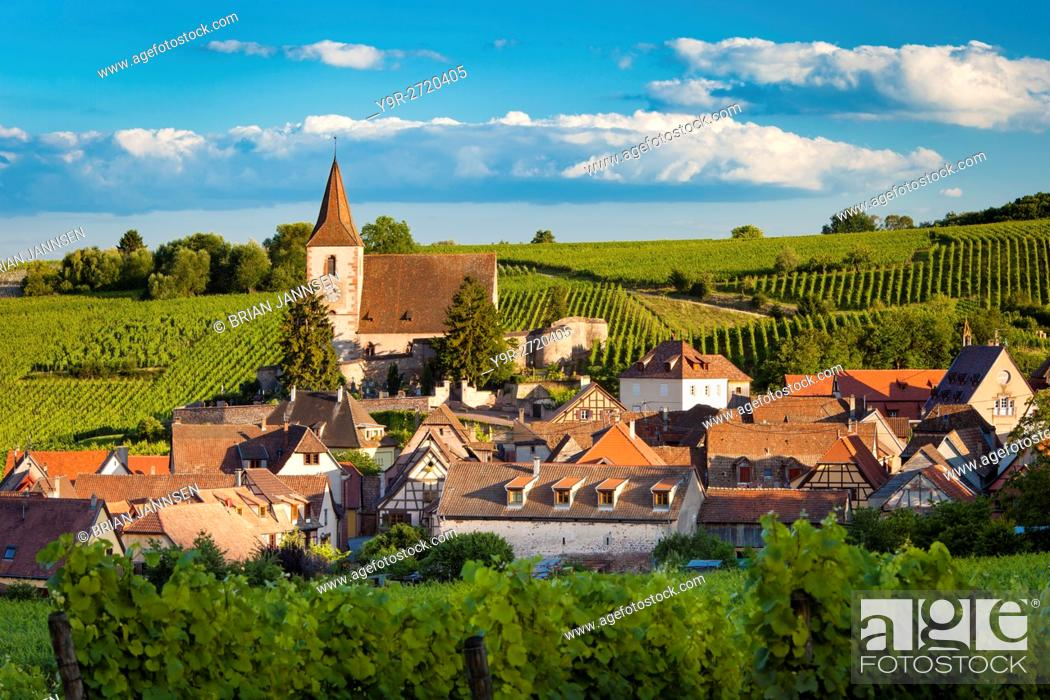 Stock Photo: View over town of Hunawihr along the wine route, Alsace Haut-Rhin, France.