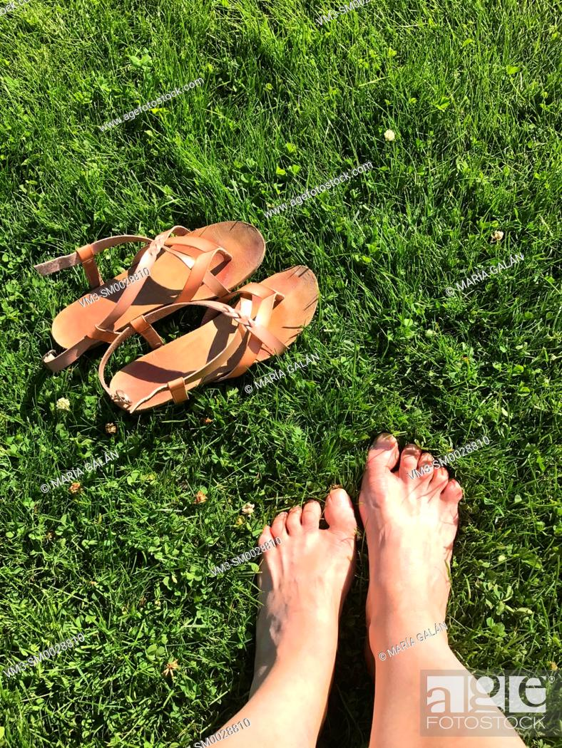 Stock Photo: Woman's feet on the grass.