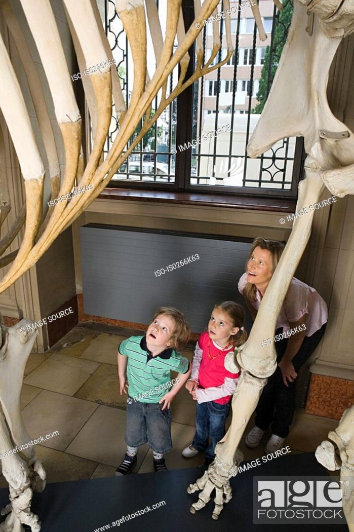 Stock Photo: Mother and children looking at dinosaur skeleton.