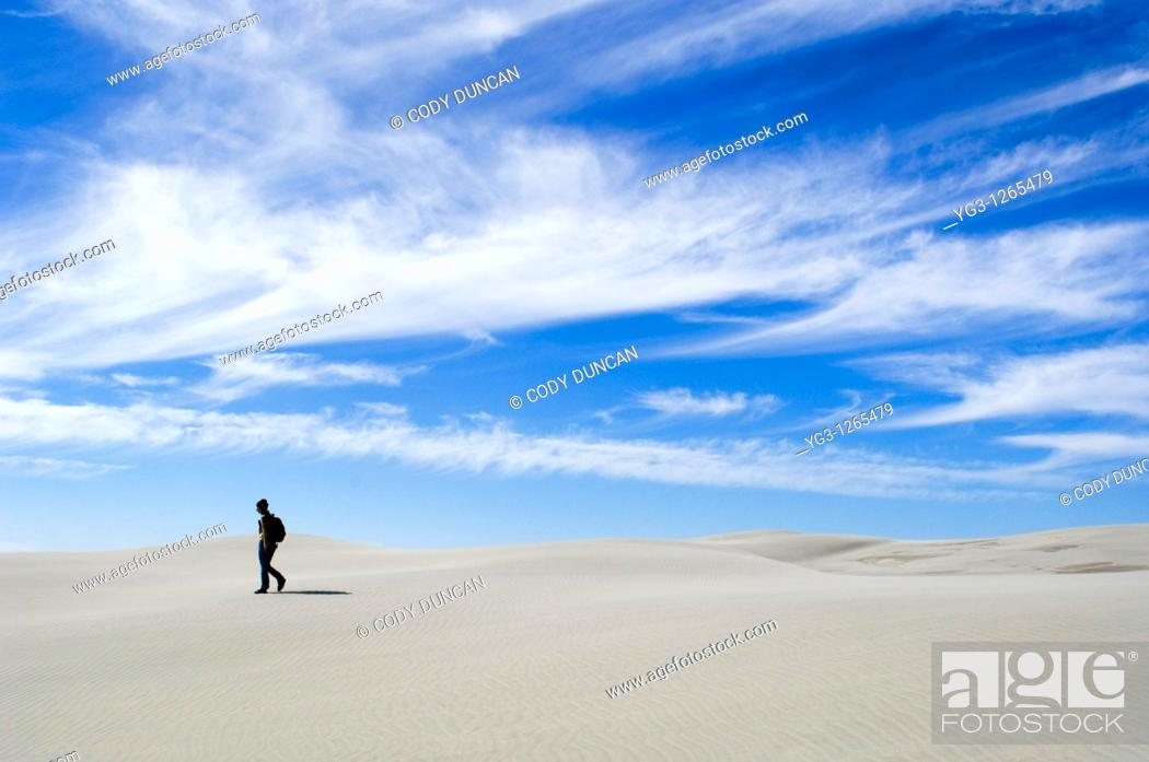 Stock Photo: Person walking on dunes, Farewell Spit, New Zealand.