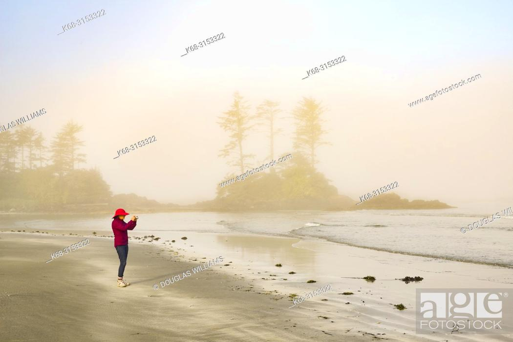 Imagen: photography, fog, photographer, woman.