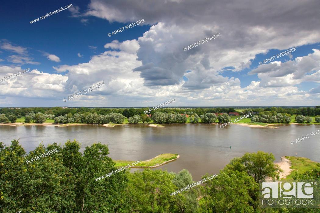 Imagen: UNESCO Elbe River Landscape biosphere reserve in summer, Lower Saxony, Germany.