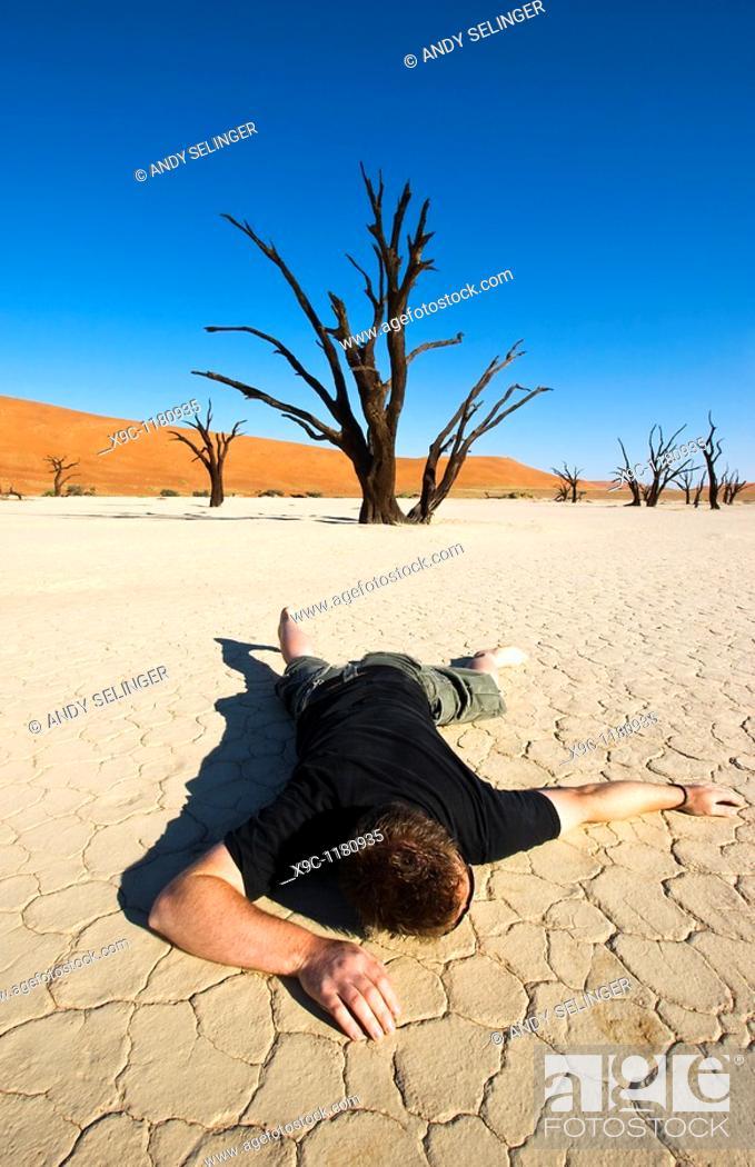 Stock Photo: Thirsty in the Desert.