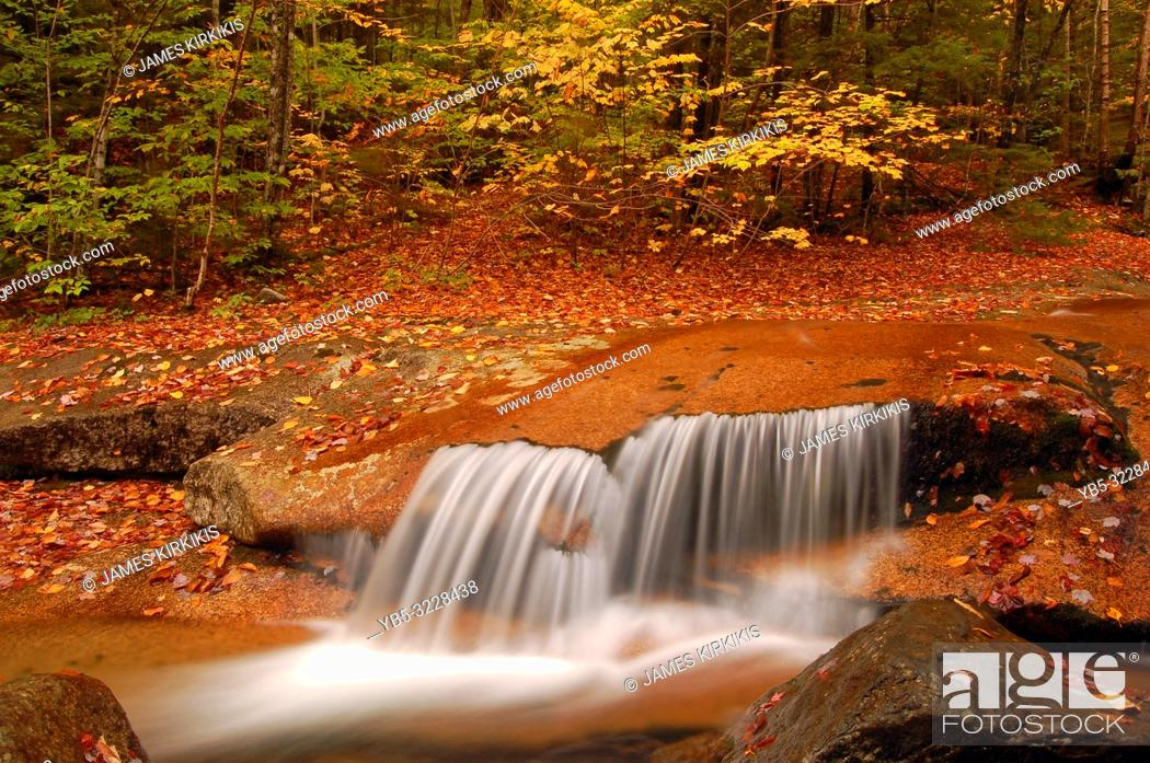 Imagen: A small waterfall gracefully glides over a rock ledge in autumn.