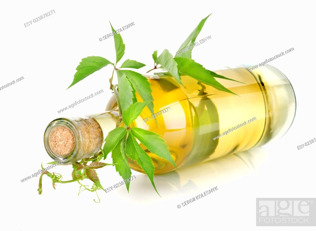 Stock Photo: White wine and vine isolated on a white background.