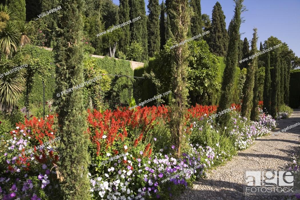 Stock Photo: Pebble path next to border with red Lysimachia and Thuja - Cedar trees, topiary in ornamental garden at the Alhambra palace in late summer, Granada, Spain.