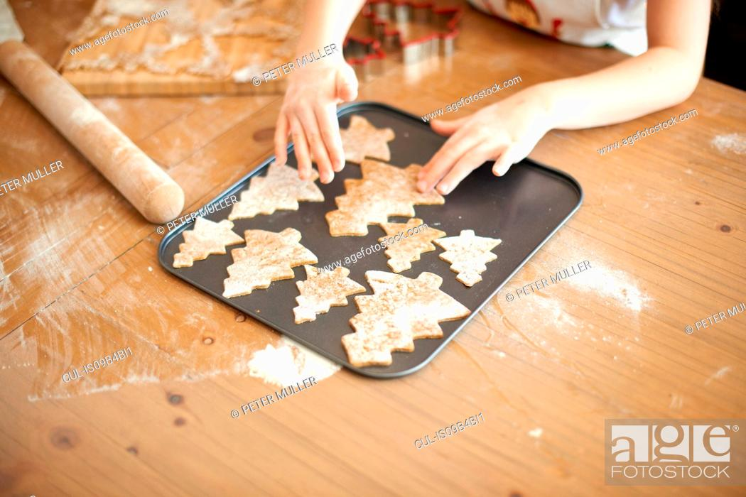 Stock Photo: Girl's hands placing Christmas tree cookies onto baking tray.