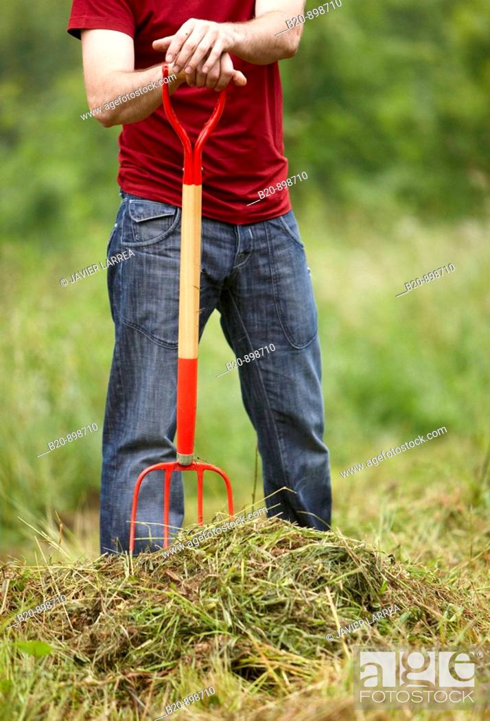 Stock Photo: Man collecting cut grass with pitchfork, hand tool, farming, Guipuzcoa, Basque Country, Spain.