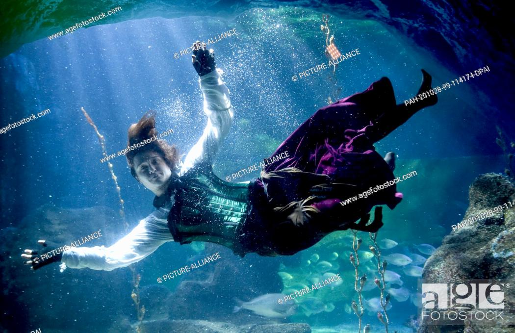 Stock Photo: 28 October 2020, Berlin: At Sea Life Berlin a diver in a witch costume dives together with fish in the Atlantic basin. The reason for this is the upcoming.