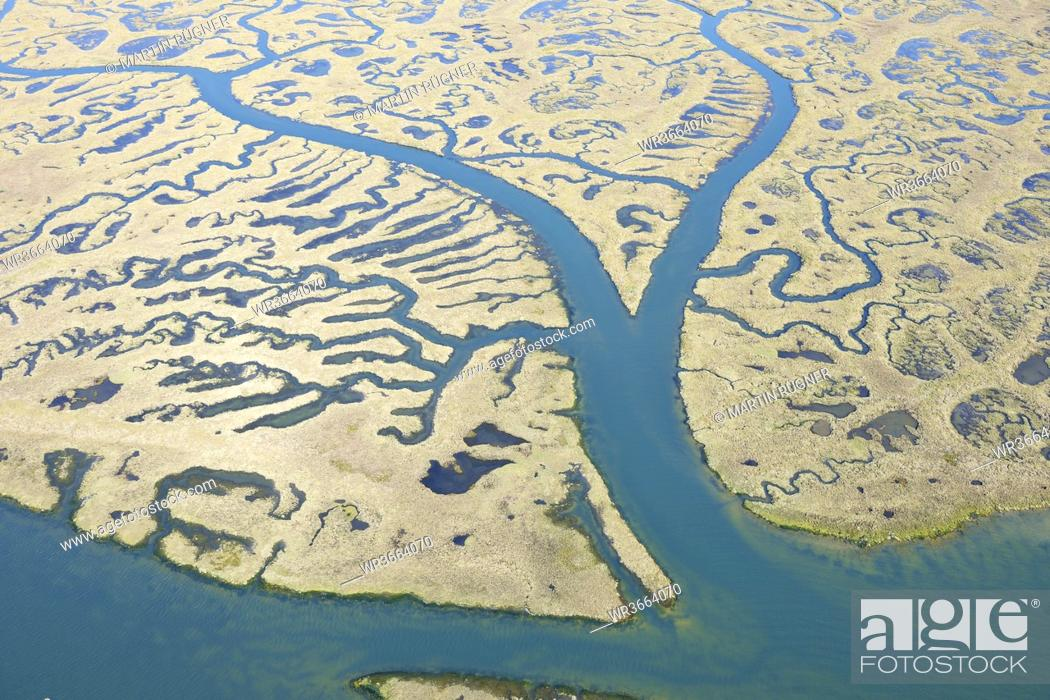 Stock Photo: Spain, Andalusia, View of marshland.