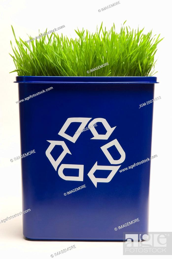 Stock Photo: Grass in a Recycling Bin.