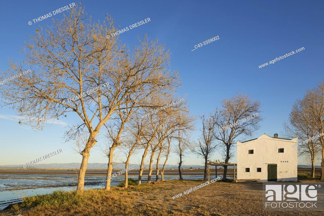 Stock Photo: Flooded rice field and small farm cottage. Environs of the Ebro Delta Nature Reserve, Tarragona province, Catalonia, Spain.