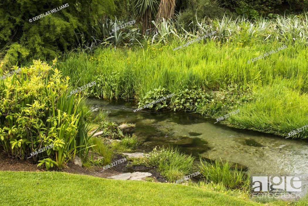 Stock Photo: garden in Queenstown, South Island, New Zealand.