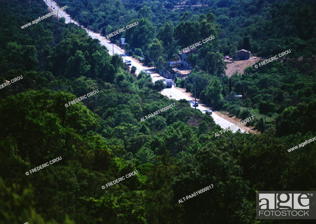 Stock Photo: Cars traveling through wooded highway, birdseye view.